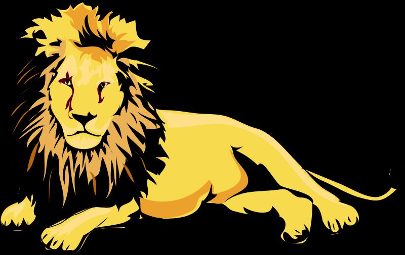 800x505 Sleeping Clipart Lion