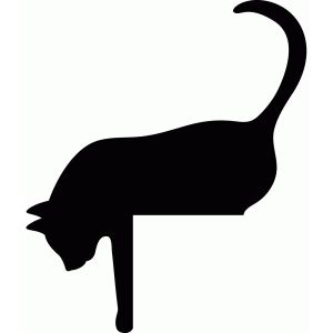 300x300 116 Best Cats! Images Cats, Diy And Black Pearls