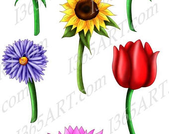 340x270 50% Off Tulip Clipart Tulip Clip Art Tulips Scrapbooking