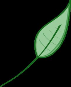 242x297 Green Leaf Clip Art