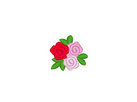 570x424 Accent Mini Rose Small Rose Small Flower Mini Roses Mini