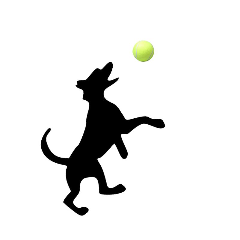 801x801 Online Shop 3 Ballsset 6.5cm Tennis Ball For Pet Small Dog Cat