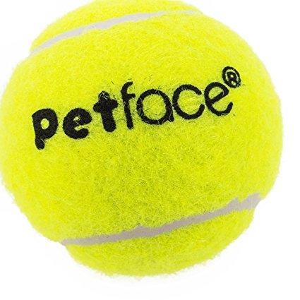 425x425 Petface Mini Super Tennis Balls, 4 Cm, 5 Piece Amazon.co.uk Pet
