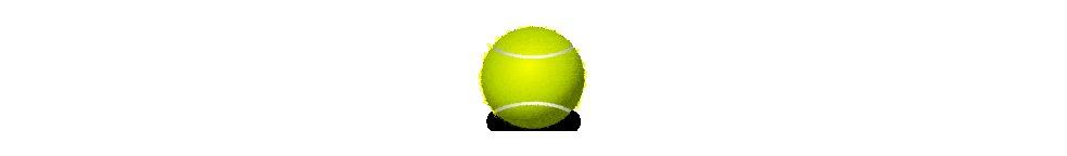 983x144 Recycling Tennis Balls Yes! Blog