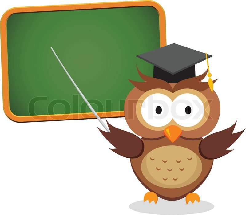 800x698 Vector Illustration Of Wise Owl Lecturer Giving Presentation