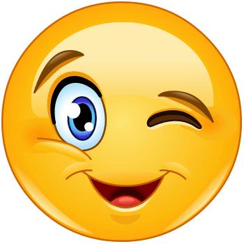 350x350 Big Wink Symbols Amp Emoticons