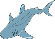 195x138 Search Results For Shark Clipart