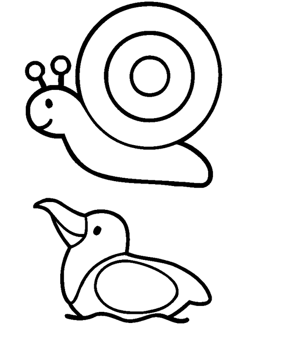 612x700 Drawn Snail Simple