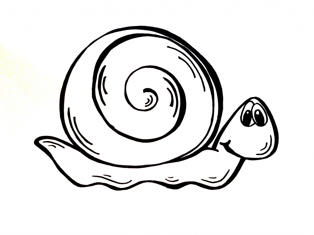 1024x767 Simple Snail Drawing Httpsiytimgviplgqsdeqoqimaxresdefault