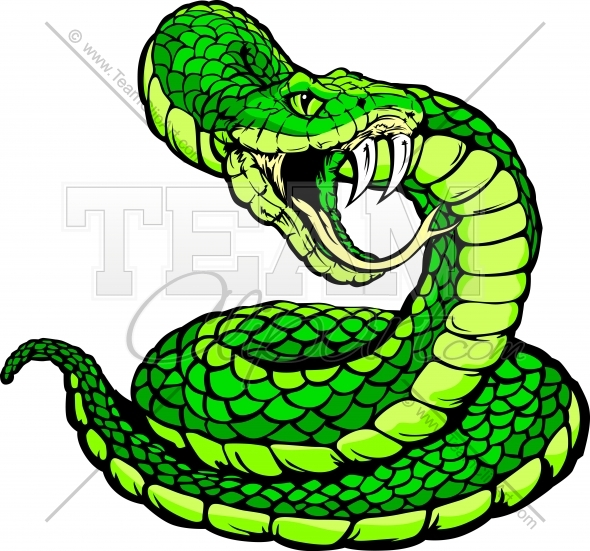 590x551 Coiled Snake Clipart