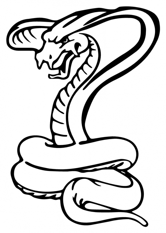572x800 Cobra clipart black and white