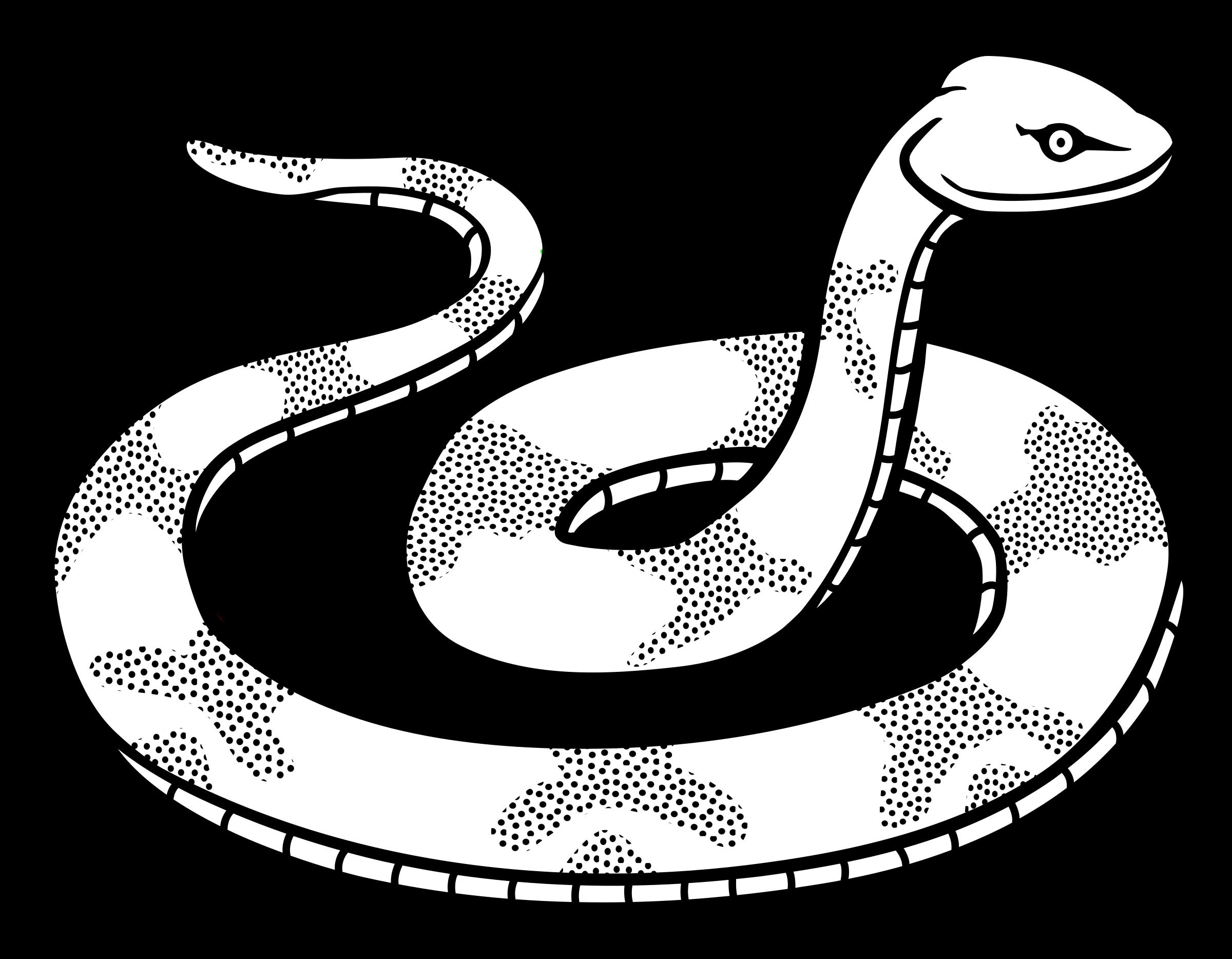 2400x1867 Bampw clipart snake