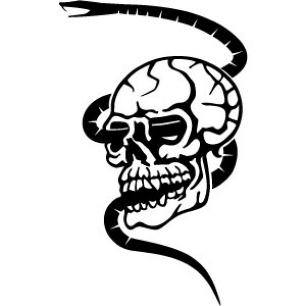 626x626 Skull With Snake Crossing In Black And White Clip Art Download