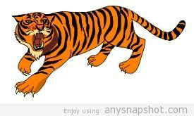 275x165 Clip Art Of A Tiger