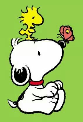 284x416 Best Baby Snoopy Ideas Snoopy, Woodstock