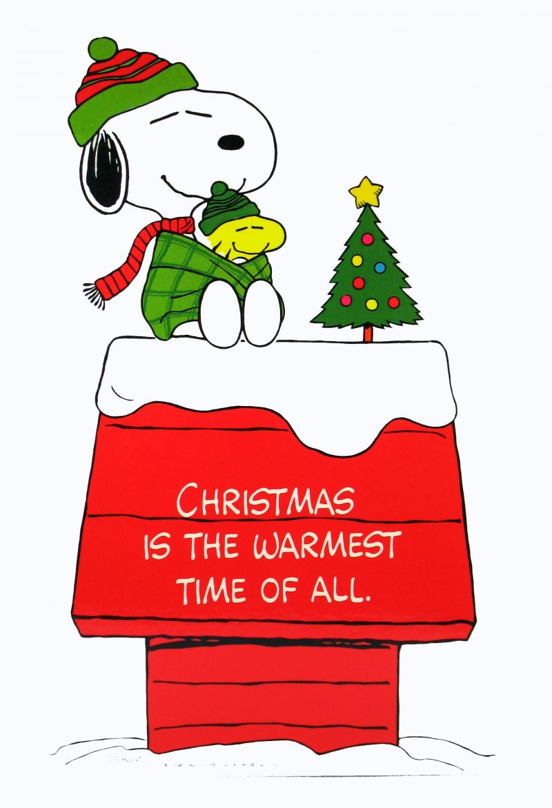800x1170 Laminated Snoopy Christmas Wall Decor