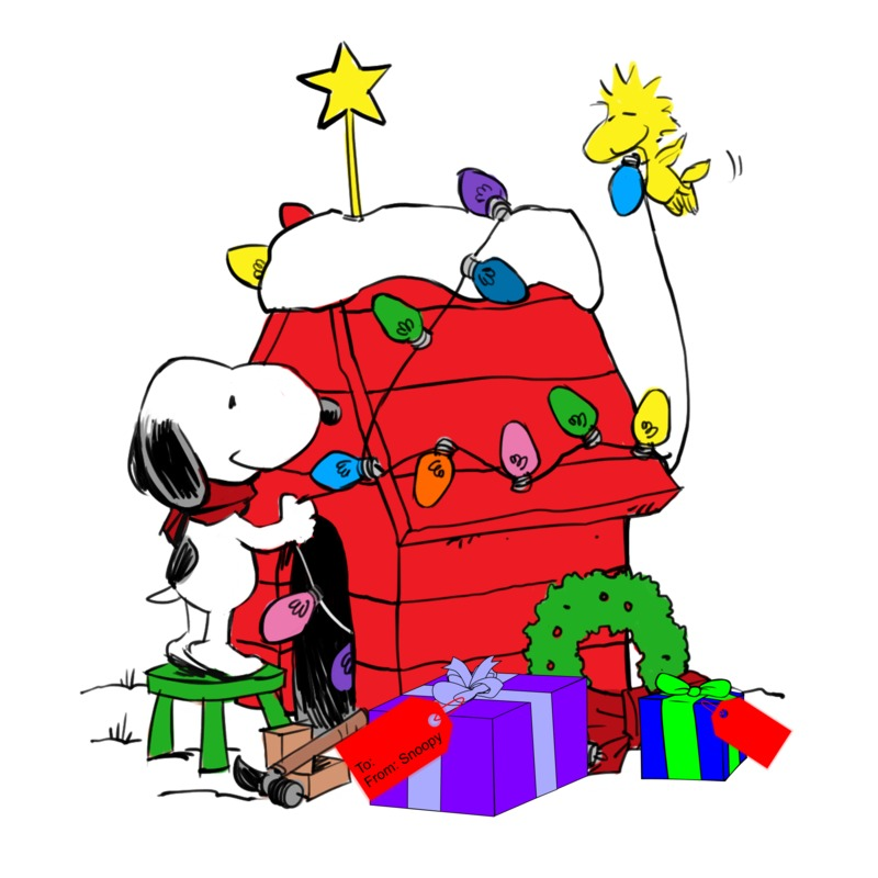 800x800 New Snoopy Display