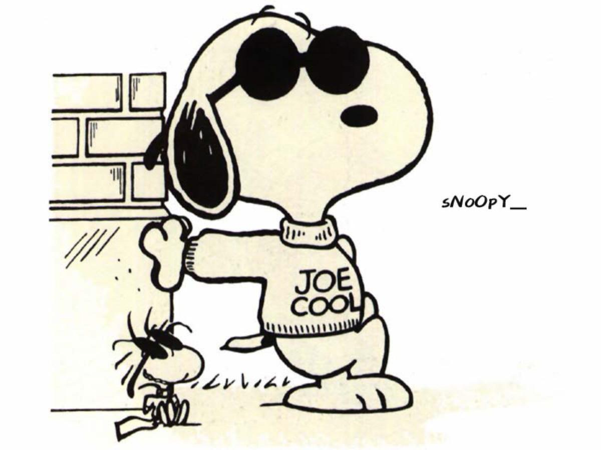 Snoopy Joe Cool Images