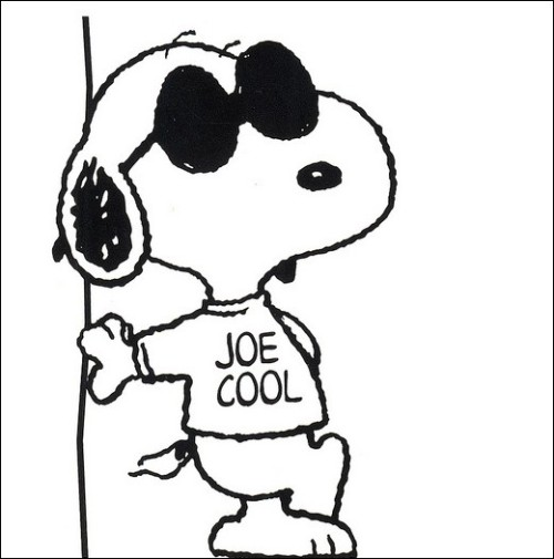 500x505 Images Of Snoopy Joe Cool Woodstock