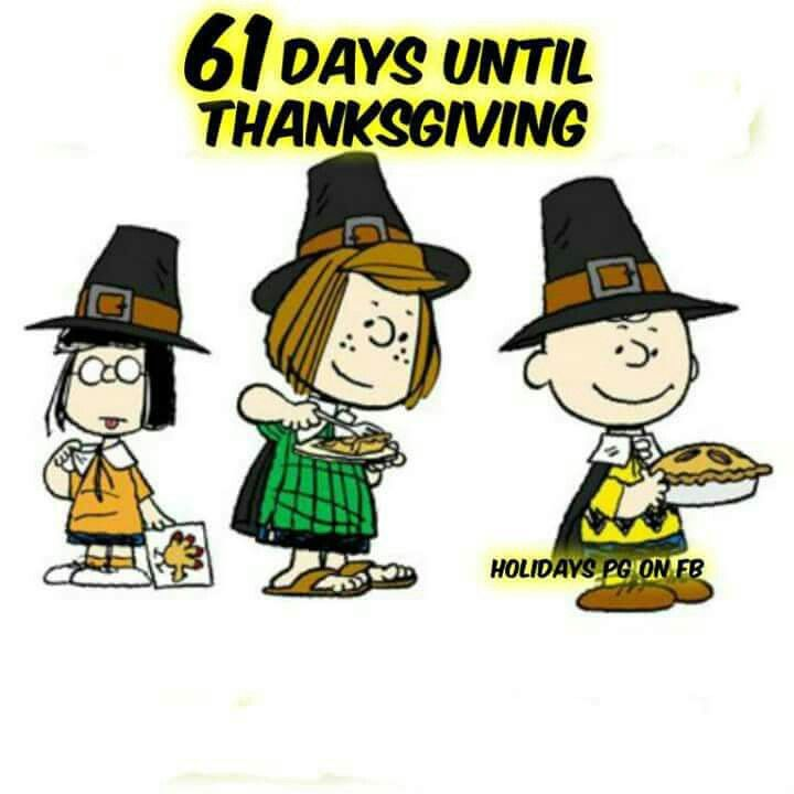 720x720 402 Best Giving Thanks Snoopy S Way! Images