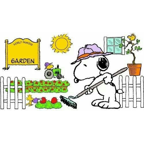500x500 66 Best Snoopy Summer Images Funny Pics, Summer
