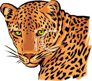 300x264 Leopard Clipart Leopard Face