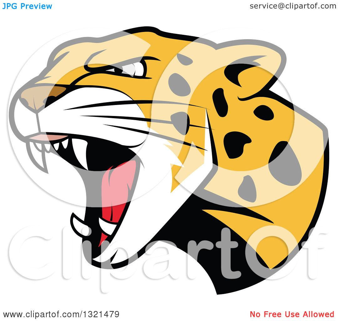 1080x1024 Snow Leopard Clipart Angry