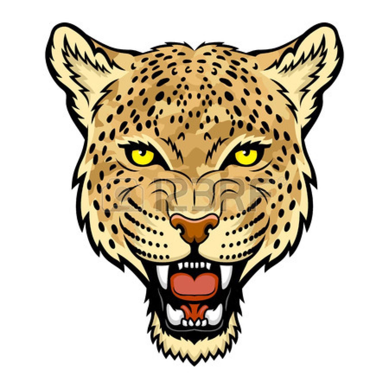 1350x1350 Top 85 Leopard Clipart