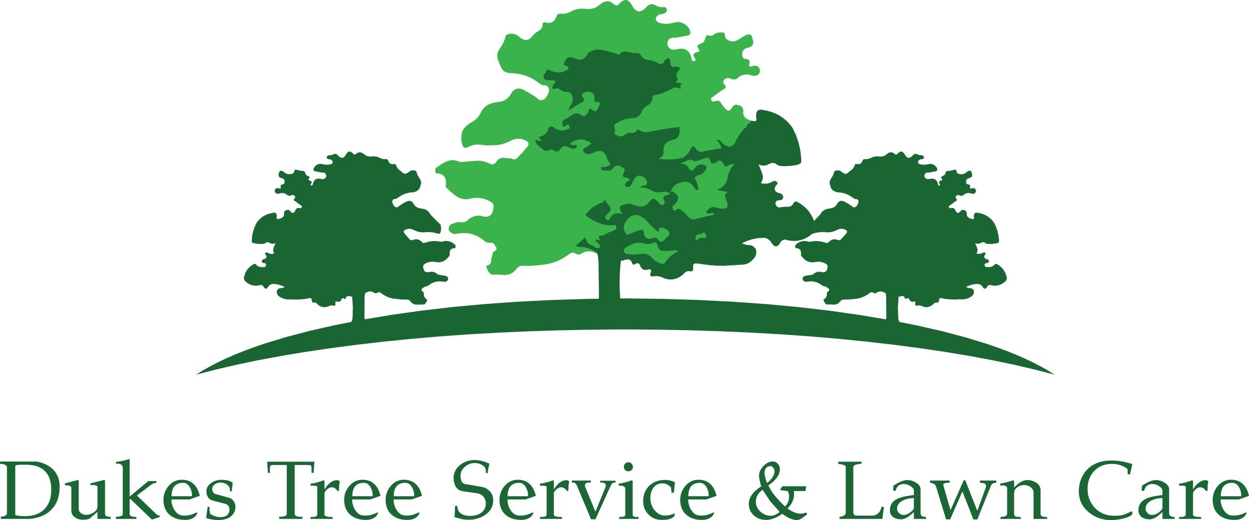2564x1068 Dukes Tree Service Amp Lawn Care