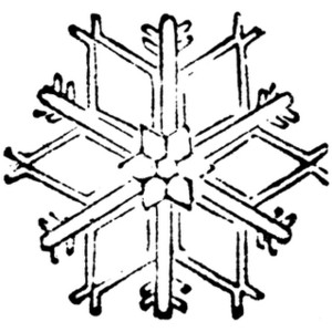 300x300 Clipart For Free Snowflake Clipart
