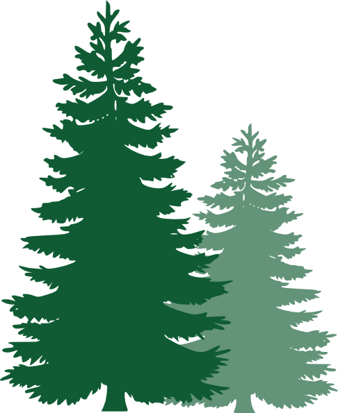 486x595 Graphics For Pine Tree Logo Clip Art Graphics