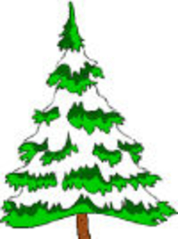 261x350 Pine Tree Clip Art Image