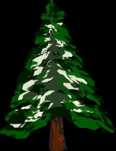 231x300 Pine Tree Clip Art
