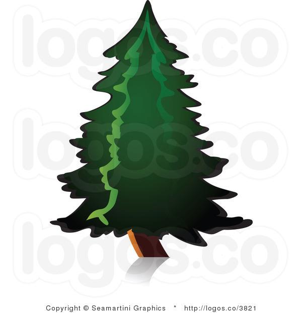 600x620 Pine Tree Clipart Royalty Free