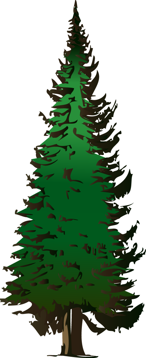 487x1187 Pine Tree Clipart Free Clipart Images 5