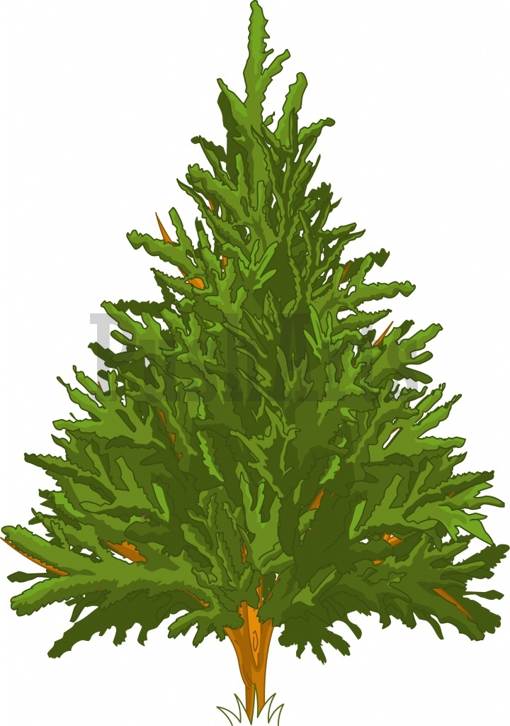 720x1024 Snowy Pine Tree Clipart Free Clipart Images