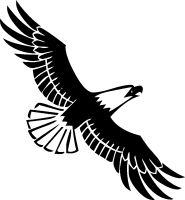 Soaring Eagles Clipart