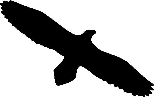 512x324 Eagle Silhouette Clip Art 101 Clip Art