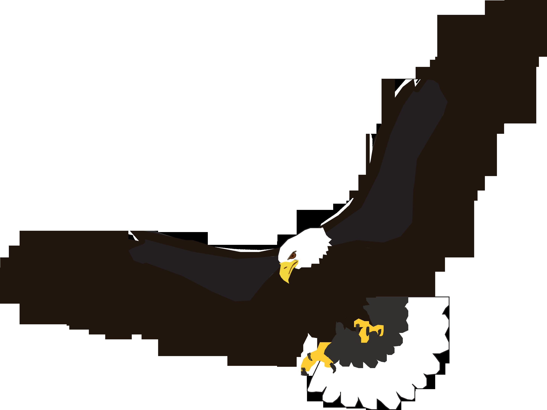 2906x2182 Bald Eagle Clipart Soaring Eagle