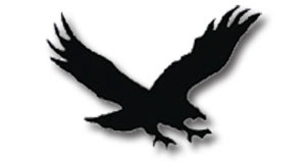 620x330 Best Hawk Clipart