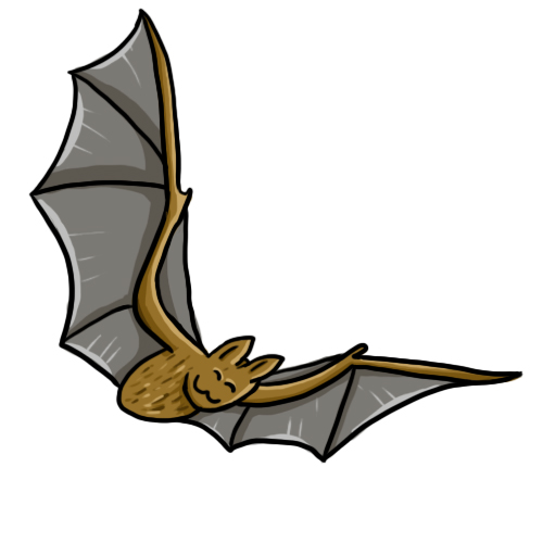 500x500 Free Bat Clip Art Drawings Andlorful Images 5