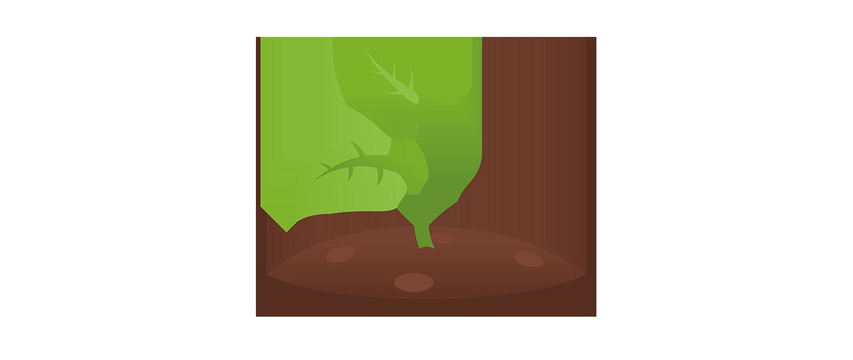 1200x507 Soil Clipart Plant Shoot