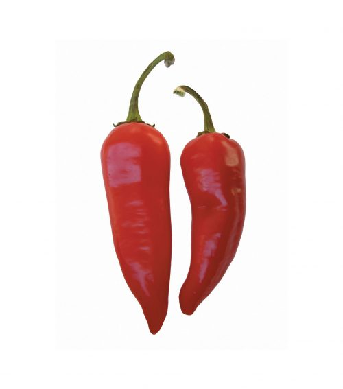 500x567 Fact Or Fiction Spicy Foods Cause Stomach Ulcers Healthy Food Guide