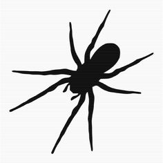 236x236 Black And White Spider Clip Art Cricutgypsy Clip
