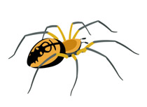 210x153 Free Spider Clipart