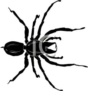 291x300 Scary Spider Clipart