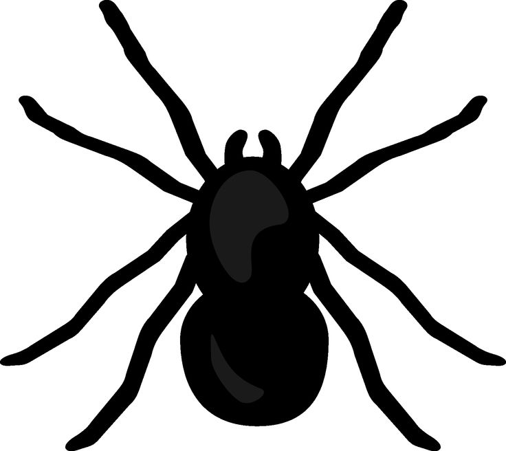736x656 Spider clipart printable