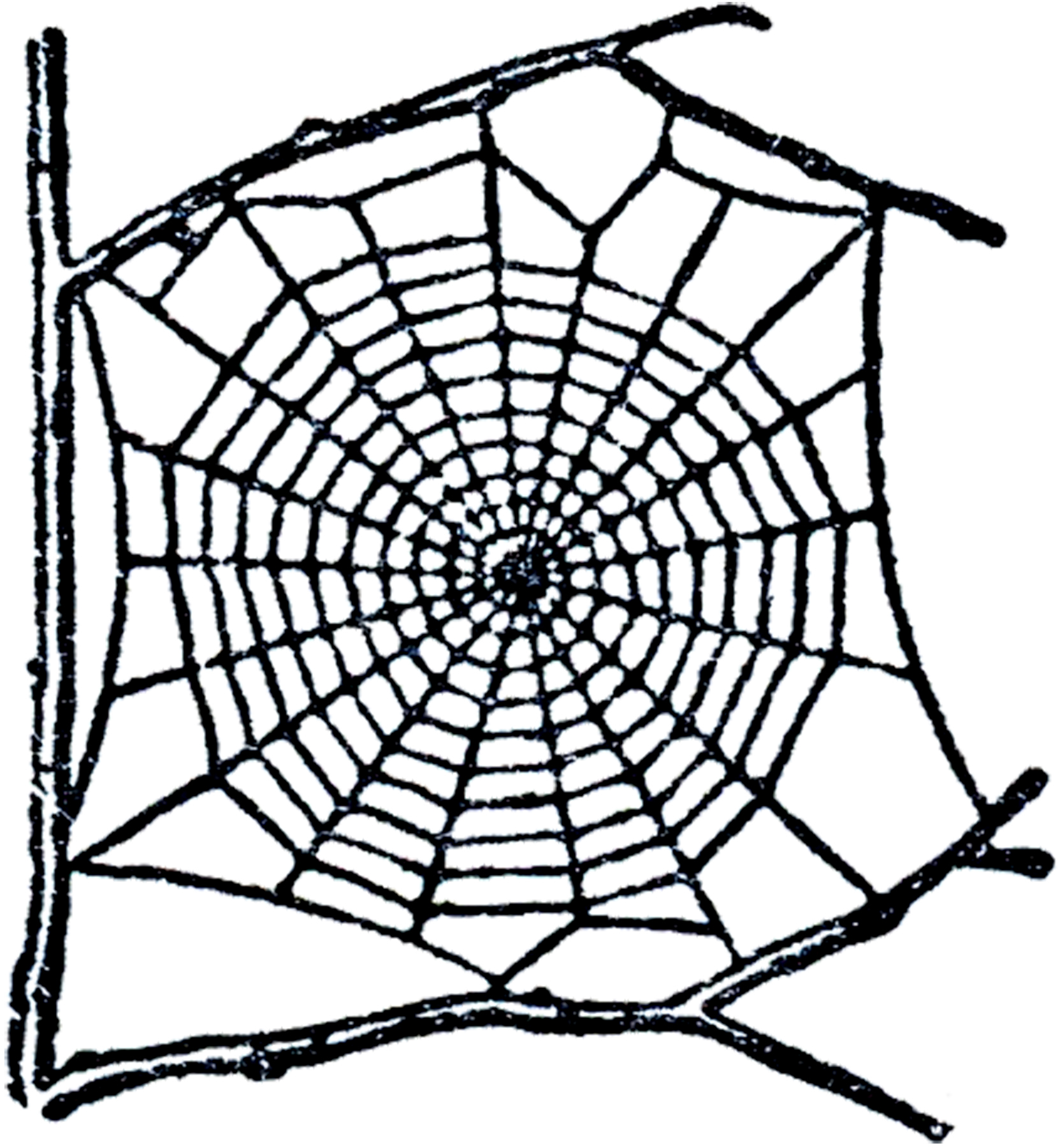 1660x1800 Free Spider Web Clip Art The Graphics Fairy 2