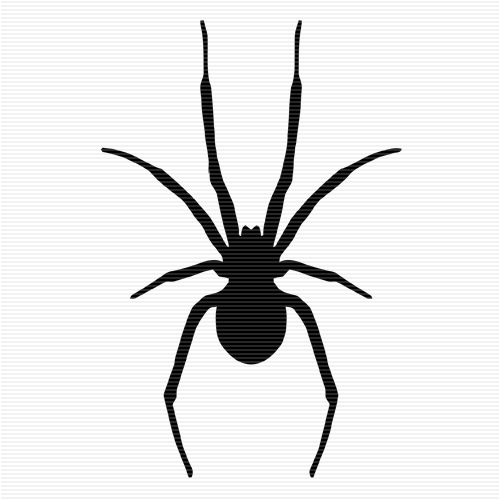 500x500 Spider Clipart Black And White