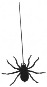 163x300 Hanging Spider Clipart Clipart Panda